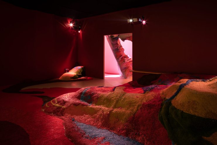 Grotta Profunda Approfundita_Pauline Curnier Jardin_at Den Frie_021_Photo by David Stjernholm
