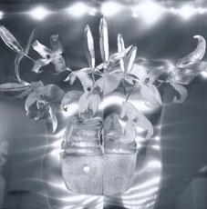 EAF_Lilies-in-a-Ceramic-Vas
